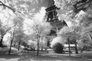 Tarde em Paris - autor anônimo